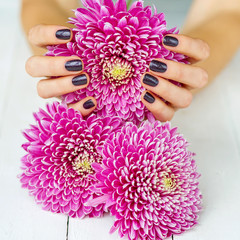 Fashion dark manicure and pink flowers