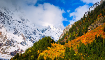 Autumn Forest Against Mountains