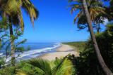 Montelimar beach - 59050695