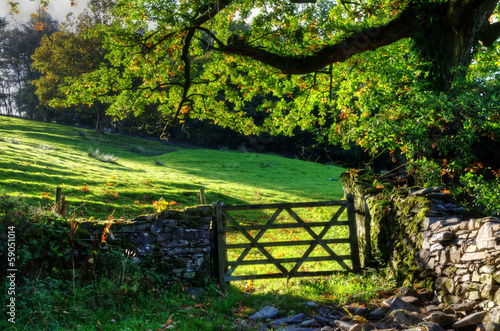 Country scene with farm gate