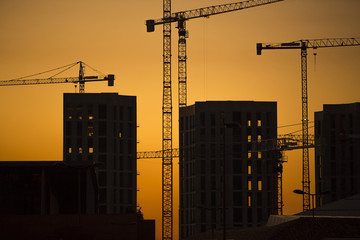 Industrial construction cranes and building silhouettes sunset