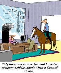 I need a company vehicle and my horse needs exercise