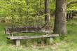 Die Holzbank im Wald