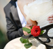 Lovely Wedding Couple sitting on a bench with a red rose
