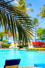 Tropical resort with swimming pool water palm trees blue sky