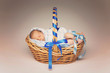 Sleeping newborn in basket