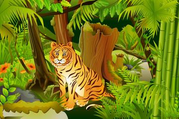 vector illustration of tiger in jungle