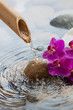 running water on stones next to flowers - 59059828