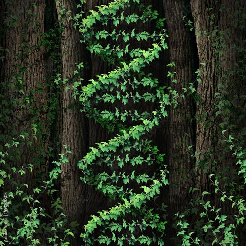 DNA Nature