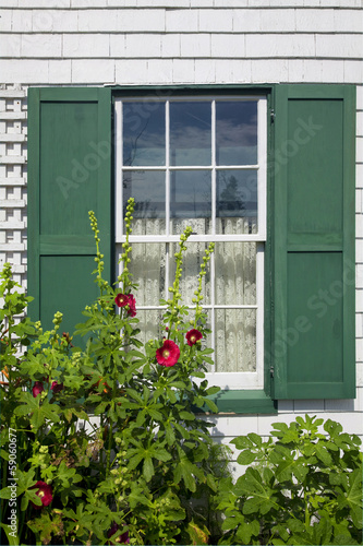 Green Gables Window and Hollyhock