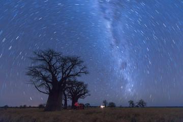 Baines Baobab Strartrail