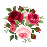 Fototapety Red and pink roses. Vector illustration.