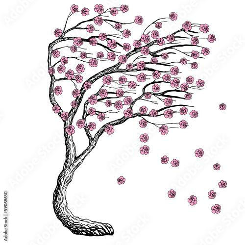 Naklejka Sketch vector sakura