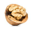 walnut half  isolated on the white background