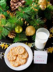 Cookies for Santa Claus.