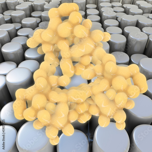 Fat cells - 3D Rendering