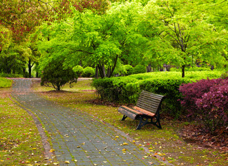 Green city park. Shanghai, China
