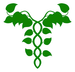 Holistic Medicine Caduceus or DNA concept