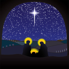 Nativity crib christmas scene
