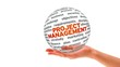 Project Management 3D Word Sphere