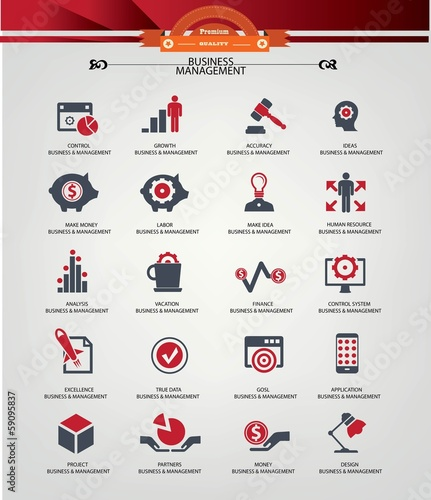 Business Management icons,Red version,vector