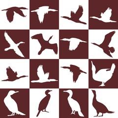background with cormorant