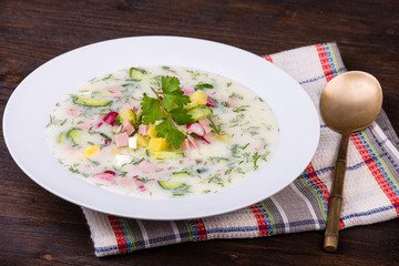 Russian okroshka with yogurt and vegetables, food