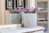 Fototapety Vintage mansion - lavender