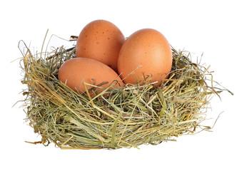 three eggs in grass nest on white