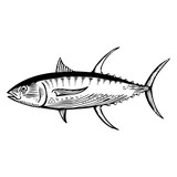 Hand Drawn Tuna