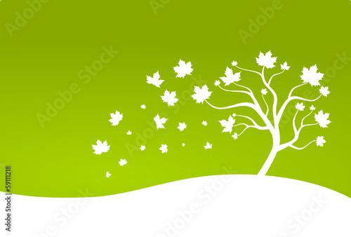 Laubbaum Blätter grün