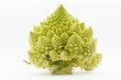 Romanesco broccoli (Brassica oleracea)