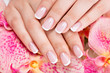 Beautiful woman's nails with french manicure