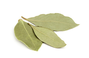 Three dried bay leaves close-up.