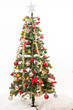 Christmas Tree with white background
