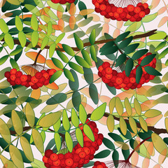 Seamless pattern with rowan berries