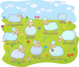 A flock of sheep in the pasture