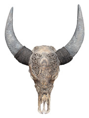 Indonesia - Buffalo skull carved