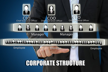 Business hand pointing corporate structure chart