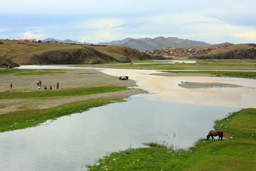 Horses grazing at Ulaanbaatar Suburbs