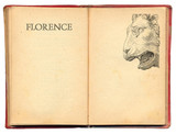Florence lion illustration