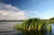 Jezioro - 59145476