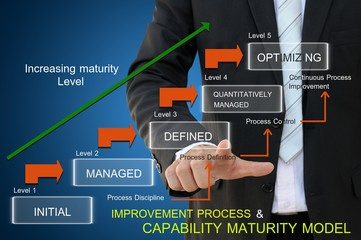 Business improvement process of capability maturity model