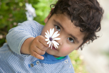 little boy holding a flower