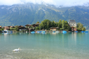 Alpine lake Brienz of Jungfrau region