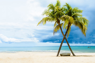 Beautiful beach with palms, Thailand