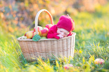 Cute newborn baby in a basket with apples in a sunny garden