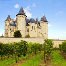 Château et les vignobles de Saumur