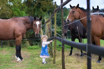 Cute little baby girl playing with horses on a farm in autumn