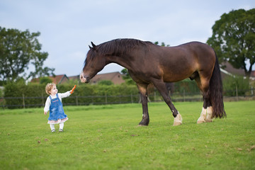 Cute little baby girl feeding a big horse on a ranch in autumn
